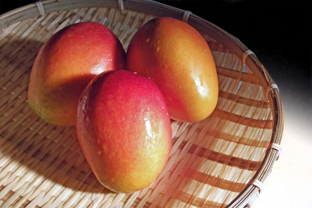 マンゴーの栄養
