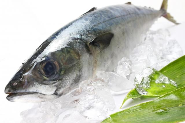 サバの栄養