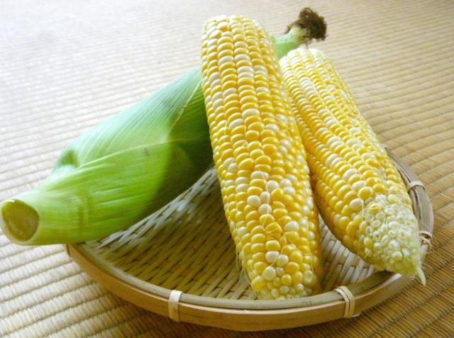 トウモロコシの栄養