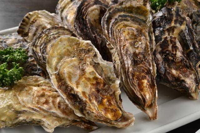 牡蠣の栄養