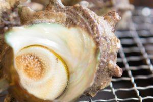 サザエの調理法