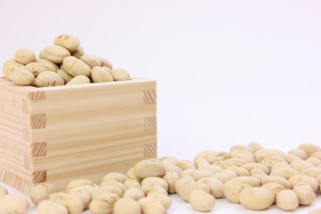 大豆の栄養