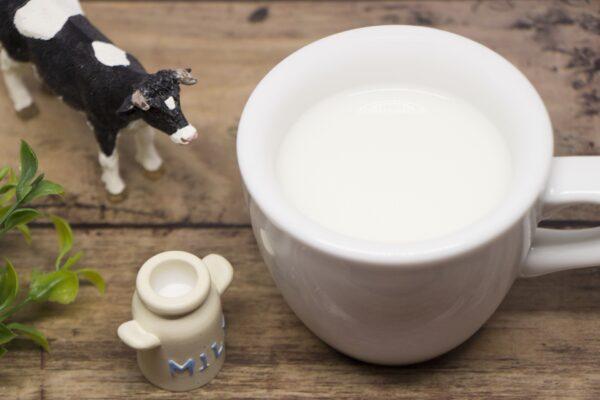マヌカハニーとホットミルク