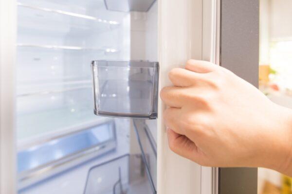 マヌカハニーと冷蔵庫